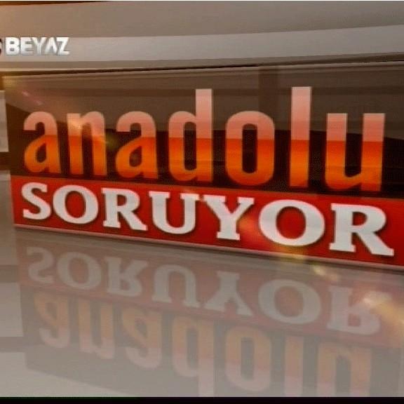 Anadolu Soruyor