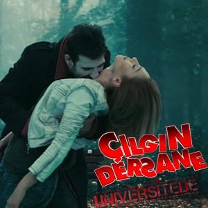 cilgin-dersane-universitede-dizisi