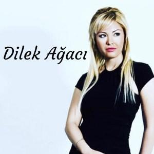 dilek-agaci