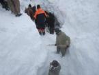 Çığ Altında Kalan İranlıların Cesetlerine Ulaşıldı