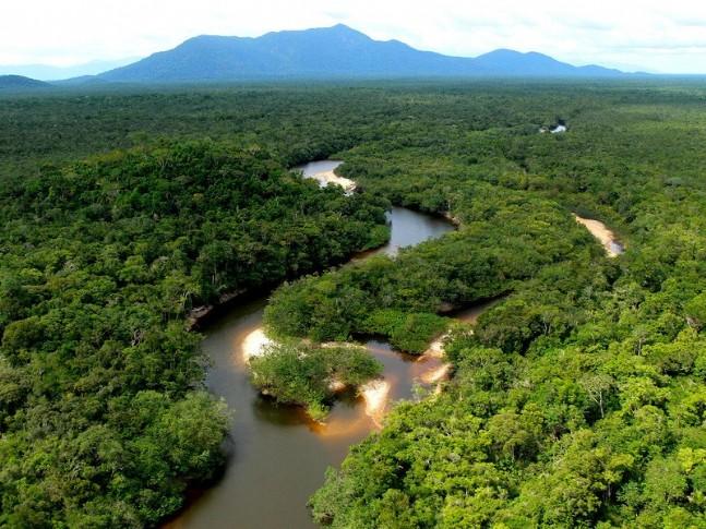 tropical world amazonia
