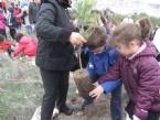 Avni Akyol'un Minik Öğrencileri Fidan Dikti