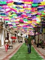 Portekiz'in Rengarenk Şemsiyeli Sokakları