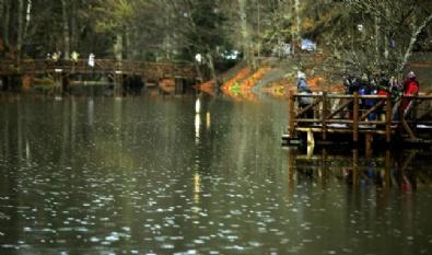 ABANT - Yedigöller Milli Parkına Yoğun İlgi