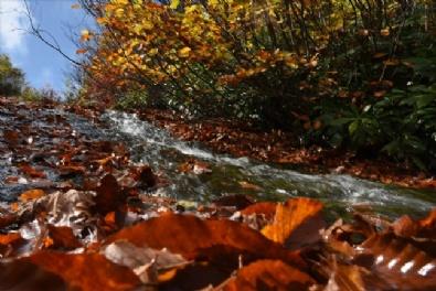 DOĞU KARADENIZ - Doğu Karadeniz sonbaharda da cezbediyor