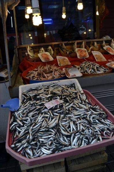Hamsi Bollaştı Balıkçıların Yüzü Güldü