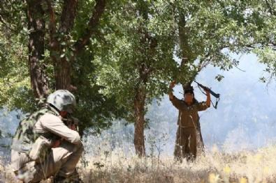 Diyarbakır Lice'de 4 Terörist Etkisiz Hale Getirildi