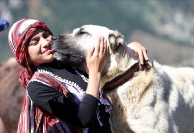 Türkiye'nin Heidisi'nin Hayali Veteriner Olmak