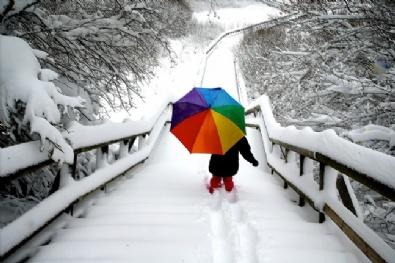 KARADENIZ - Abant'ta Kar Yağışı