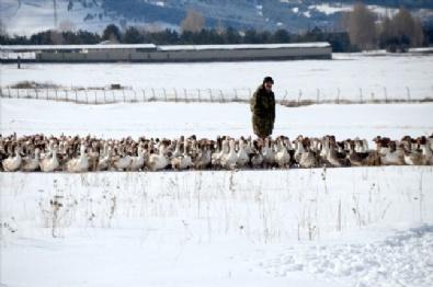 Kışın Vazgeçilmez Lezzetinin Sofraya Yolculuğu