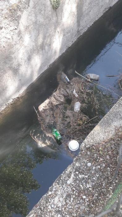 Sulama Kanalında Bir Kolu Kesilmiş Kadın Cesedi Bulundu