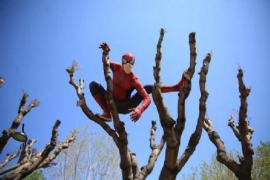 Yerli Örümcek Adam Yaşlıların Kahramanı Oldu