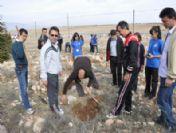 Karaman'da Ağaçlandırma Seferberliği