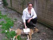 Öldürülen Köpeğine Otopsi Yaptırdı