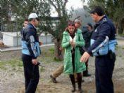 Burhaniye'de Barınak Tartışması