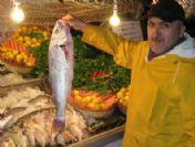 Gaziantep'te Sahan Şirehan'la Balık Tüketimi Arttı