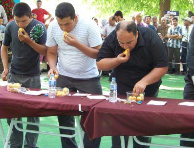 ÖMER İNAN - Mut Kayısı Festivali Başladı