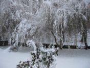 Bahçesaray'da Kar Yağışı