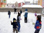 Muradiye'de Kar Yağışı