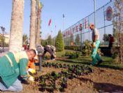 Akdeniz Belediyesi'nden Yeşillendirme Çalışması