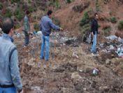 Çöplüğe Atılan Yaban Domuzu 20 Çoban Köpeğini Öldürdü