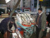 Kırşehir'de Balık Bereketi Yaşanıyor