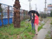 Trafodan Kopan Elektrik Teli Öğrencileri Korkuttu