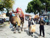 Altınova'da Develer, Anneler İçin Güreşecek