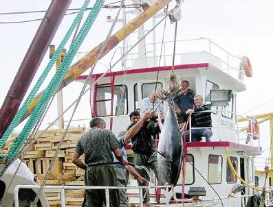 ABHAZYA - Balıkçılar