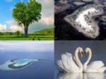 PATAGONYA - İşte Yaşamın Doğal Kalpleri