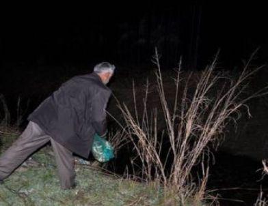 Anamur'da Kurbağa Avcılarına Gece Operasyonu