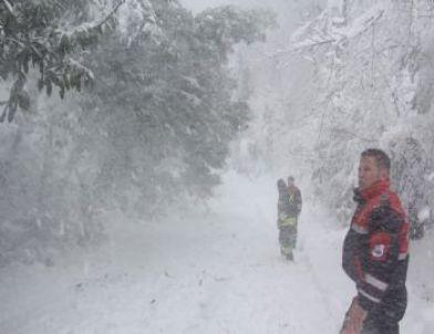 Arama Kurtarma Ekibi Ağaç Dallarını Kar Yığınlarından Kurtardı