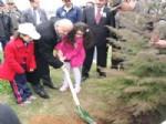 CEZMI BATUK - Trabzon'da Dünya Ormancılık Günü ve Haftası Etkinlikleri