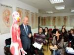 CEMAL ÇEVIK - Doktorlar Akupunktur Öğreniyor, Hastalar Ücretsiz Tedavi Oluyor