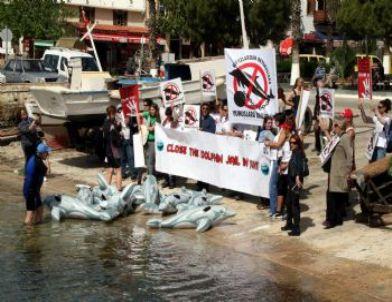 Antalya'da 'Tutsak Yunuslara Özgürlük' Eylemi