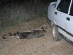 TOKMACıK - İsparta'da Kaza:1 Ölü