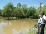 İlgaz'da Tarım Arazilerini Dolu Vurdu