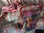 NAZAN ÖNCEL - İşte Türkiye'yi şoke eden o olayın korkunç görüntüsü