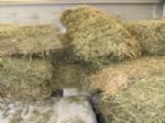 Saman Balyaları Arasında Kaçak Sigara Ele Geçirildi