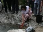 ABDULLAH AYAZ - Rize'de 5 Bin Alabalık Dereye Bırakıldı