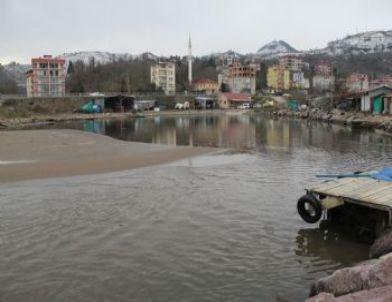 Vali Şahin Balıkçı Barınaklarını İnceledi