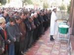ALI ÖMEROĞLU - Araban Ziraat Odası Başkanı Mehmet Doğan'ın Acılı Günü