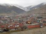 BÜYÜKKARABAĞ - Afyonkarahisar'da Kuduz Karantinası