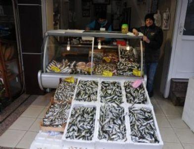 Balık Fiyatları Arttı
