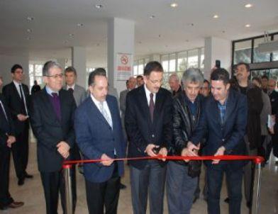 Özhaseki 'Tuvale Hat' Sergisini Açtı