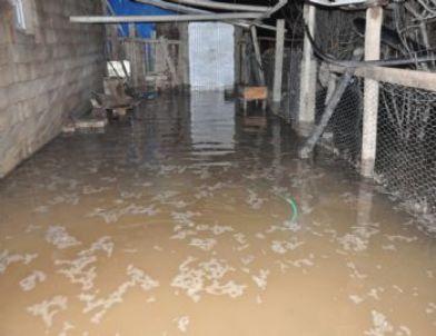 Su Borusu Patladı, Köy Su Altında Kaldı