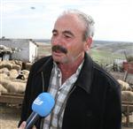 YASSıÖREN - (özel Haber) Koyunları Telef Olan Köylünün Gözyaşları