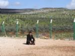 MAHMUT KOÇ - Görgü Tanığı: 'bombacılar 3 Kişiydi, Uzaktan Kumanda İle Patlattılar''