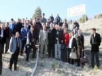 HAMZA YANıLMAZ - Elazığ'da Hamza Yanılmaz Hatıra Ormanı Oluşturuldu