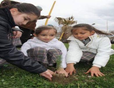 Öğrenciler Yeşil Bursa için Ağaç Dikti